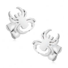 Šperky eshop - Puzetové náušnice z chirurgickej ocele, pavúk striebornej farby S50.25