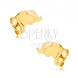 Zlaté puzetové náušnice 375 - ligotavý maličký sloník