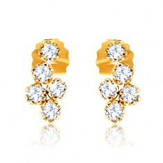 Šperky eshop - Puzetové náušnice v žltom 9K zlate - strapec z okrúhlych zirkónov čírej farby GG54.01