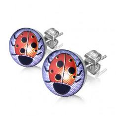 Šperky eshop - Puzetové náušnice z ocele, strieborná farba, číra glazúra, lienka SP47.13