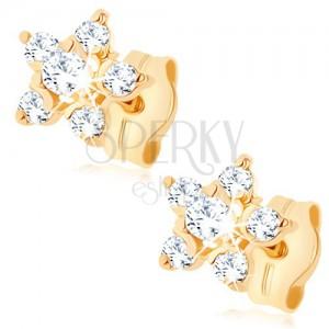 Zlaté náušnice 375 - číry zirkónový kvietok, vyvýšený stred, puzetky