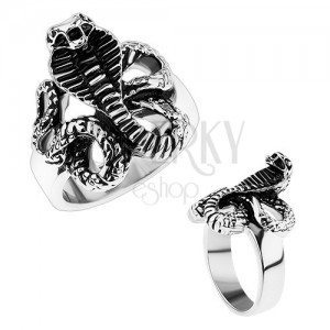 Mohutný oceľový prsteň, lesklé ramená, patinovaný had - kobra