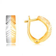 f33fbec4d Šperky eshop - Zlaté náušnice 585 - vypuklý oblúk so šikmými zárezmi, žlté a  biele zlato GG217.37 e-shop >>