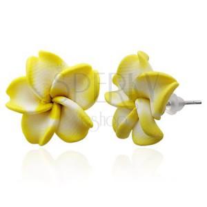 Náušnice z hmoty FIMO - žlto biely kvet